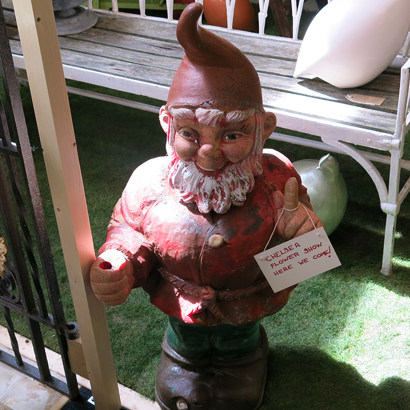 Garden gnomes coming to Chelsea