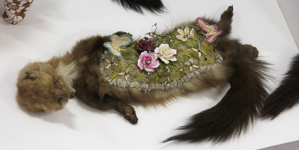 Polly Hardy taxidermy 5